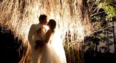 beautiful wedding background photo